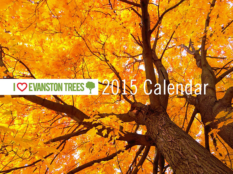 2015 Trees Calendar proof 2 Page 01
