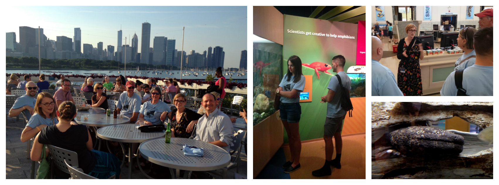 Shedd Aquarium design team visited by NeigerDesign